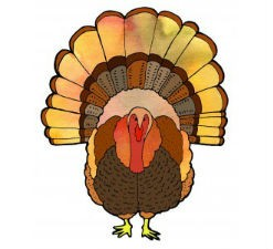 Turkey2-247x225